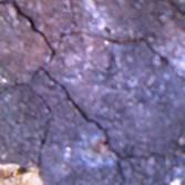 天牛星陨石网 - 木瓜瓜 - 让过去过去,让未来到来