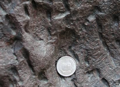 陨石的分类 - 木瓜瓜 - 让过去过去,让未来到来